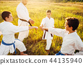 karate, exercise, group 44135940