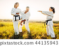 karate, fight, fighter 44135943
