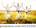 karate, sport, exercise 44135946