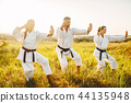 karate, sport, exercise 44135948