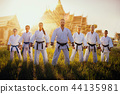 karate, exercise, group 44135981