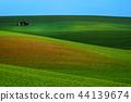 Rural spring landscape 44139674