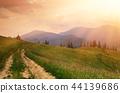 Summer mountain landscape 44139686