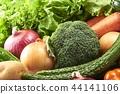 브로콜리, 식자재, 요리 재료 44141106