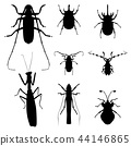 insect silhouette illustration vector set 44146865