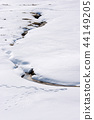 돗토리 사계절 산책 겨울 돗토리 사구 44149205