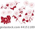 동백 꽃 일러스트 소재 44151189