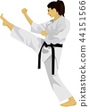 Karate Kick Japan Martial Art 44151566