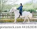 백마를 타고 승마 연습을하는 소녀 44162838