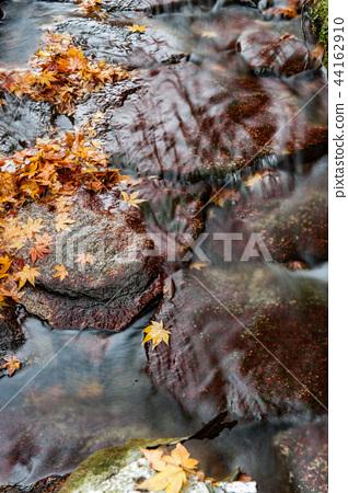流动的水,流动的叶子 44162910
