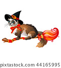 Cute fluffy ferret in the black witch hat flying on a broom isolated on white background. Sketch for 44165995