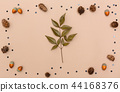Autumn themed elements on brown paper 44168376