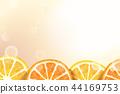 插畫 柑橘 留白 44169753