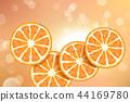 柑橘 水果 橙色 44169780