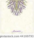 留白 文案区域 花朵 44169793