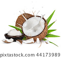 close-up of a coconuts with milk splash. 44173989