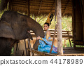 Thai girl with elephant 44178989