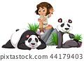 panda, background, white 44179403