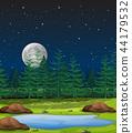 forest night scene 44179532