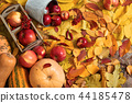 fruits and vegetables on autumn yellow leaves 44185478