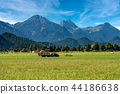 Countryside and Alps - Bavaria Schwangau Germany 44186638