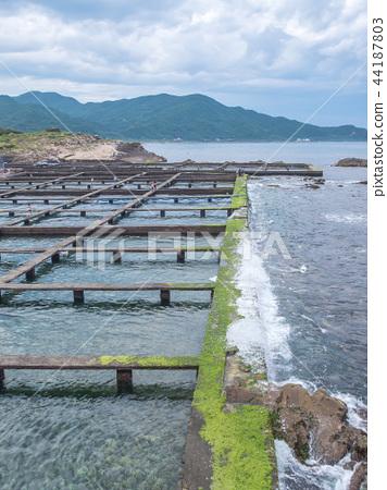海邊的魚塭 44187803