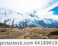 mountain, snowy, sky 44189619