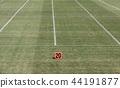 美式足球 足球 田野 44191877
