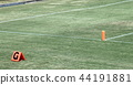 美式足球 足球 田野 44191881