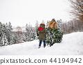 christmas, snow, senior 44194942