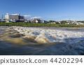 증수, 강, 풍경 44202294