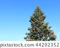 크리스마스 트리 44202352