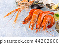 Fresh seafood on crushed ice. 44202900