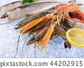 Fresh seafood on crushed ice. 44202915