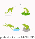 Animal icons collection vector illustration 053 44205795