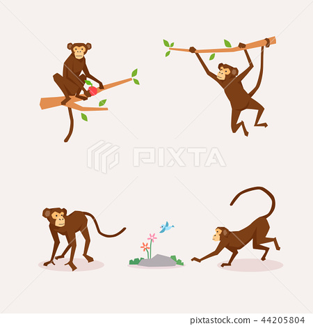 Animal icons collection vector illustration 048 44205804