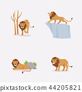 Animal icons collection vector illustration 035 44205821