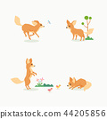 Animal icons collection vector illustration 068 44205856