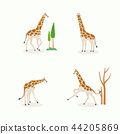 Animal icons collection vector illustration 049 44205869