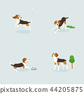Animal icons collection vector illustration 007 44205875