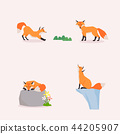 Animal icons collection vector illustration 039 44205907