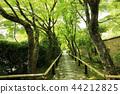 5 월 신록의 光悦寺 - 교토 鷹ヶ峯 - 44212825