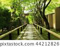 5 월 신록의 光悦寺 - 교토 鷹ヶ峯 - 44212826
