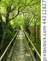 5 월 신록의 光悦寺 - 교토 鷹ヶ峯 - 44212827