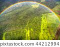 彩虹 夏威夷 瓦胡島 44212994