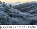 富士山 雾凇 世界遗产 44213261