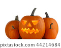 Halloween Pumpkins on white 44214684