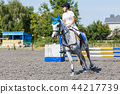 Young horse rider girl galloping on her course 44217739
