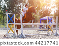 Equestrian sport. Young girl jumping over obstacle 44217741
