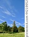 푸른 하늘, 파란 하늘, 빈터 44219052